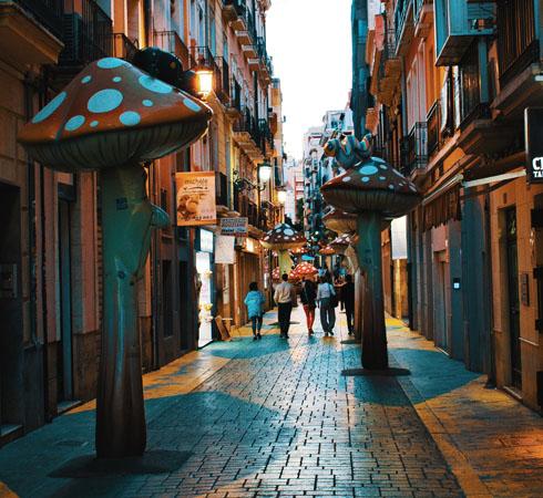 1 calle setas